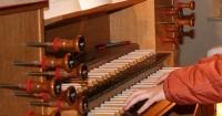 Orgel-